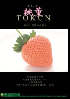 20140306-vt_tokun_booklet.png