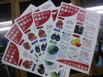 野菜苗チラシ