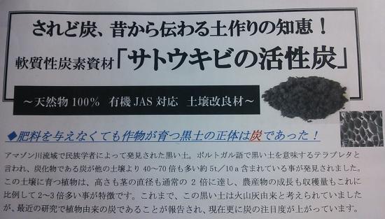 20120813-DSC_0137.JPG