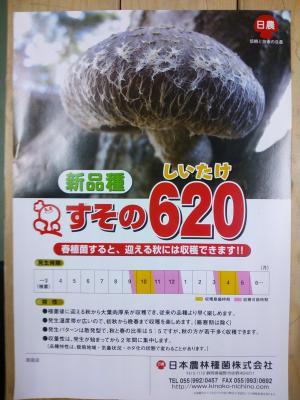 20130206-s_DSC_0348.JPG