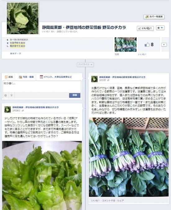 20130306-facebook.jpg