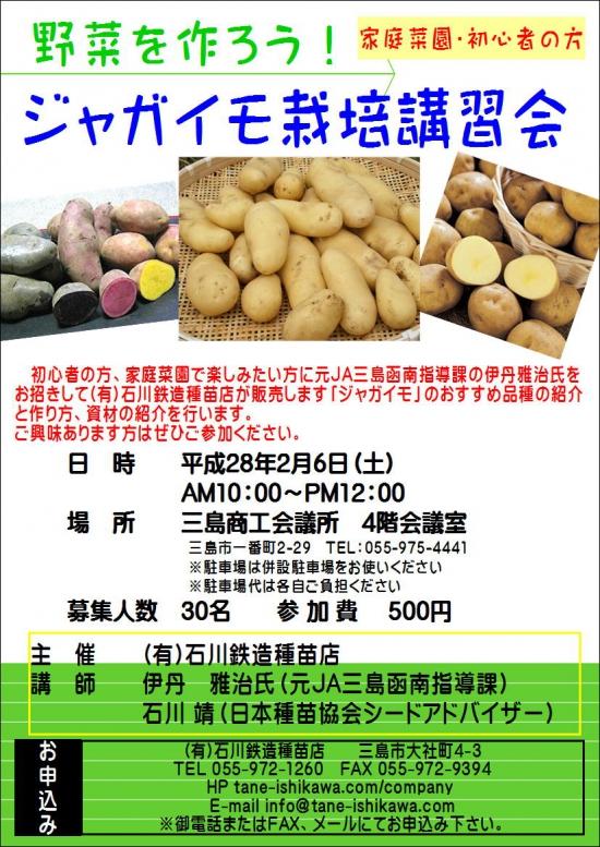 20160126-potato.JPG